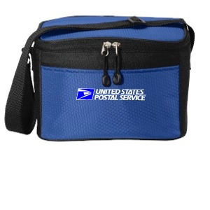 6 Pack Cube Cooler Bag
